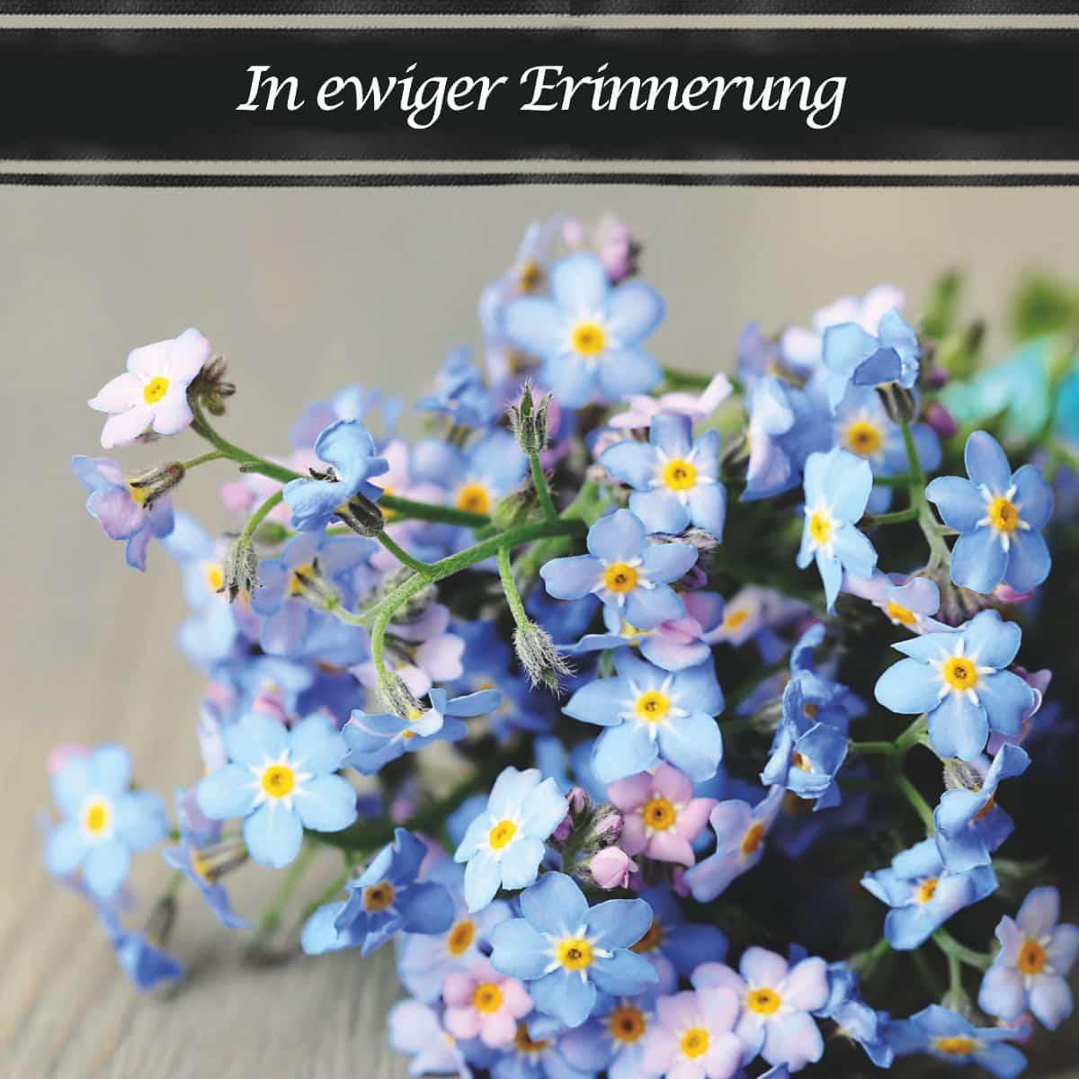 Hofer Premium 7 Tage Motivlicht, IN EWIGER ERINNERUNG