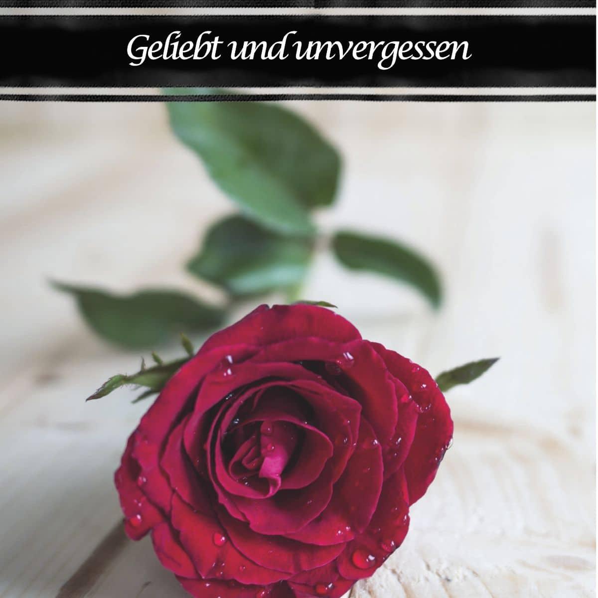 Hofer Premium 7 Tage Motivlicht, GELIEBT UND UNVERGESSEN